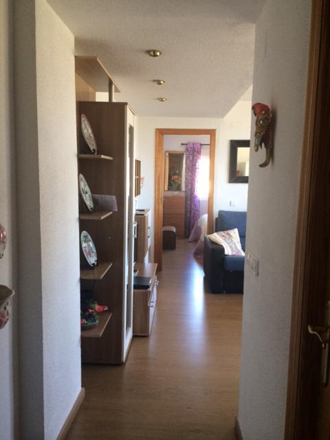 apartment Benidorm 5066