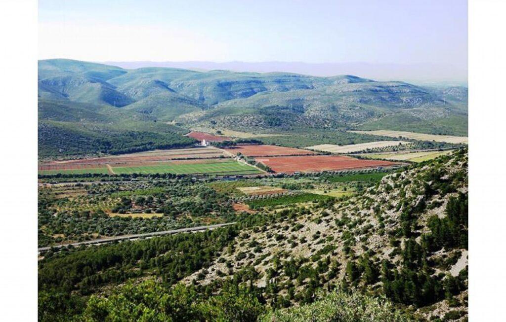 Finca Area of Castellón 5609