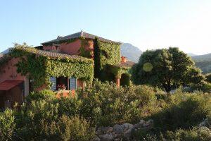 Finca Area Serra del Ferrer 5017